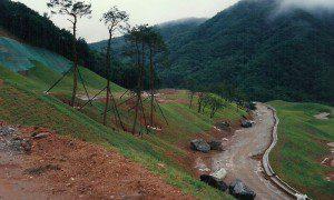 pine-creek-13